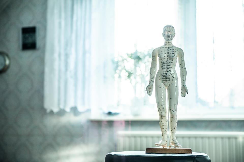 Osteopata a Bertolla